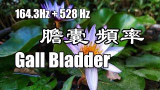 Gall Bladder (164.3Hz) + DNA Repair (528Hz) Singing bowl Healing Sounds