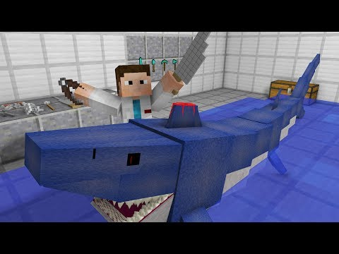 Monster School: Top 5 Operations (Minecraft Animation)