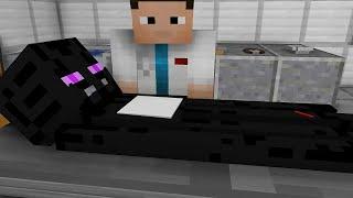 Monster School: Top 5 Operations (Minecraft Animation)