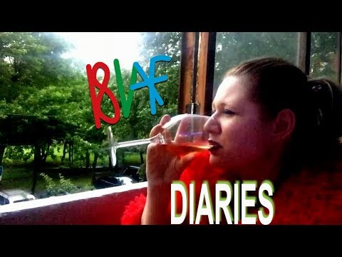 Bad Video Art Festival 2018: Diaries