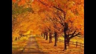 Чайковский времена года осень