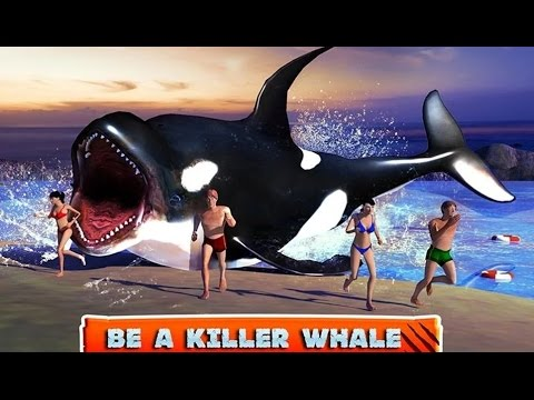 Killer Whale Beach Attack 3D - Android Gameplay HD