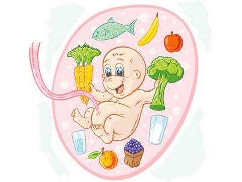 أهم العناصر الغذائية في فترة الحمل