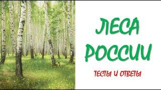 Окружающий мир 4 класс | Леса России | Тесты по окружающему миру | Тесты по географии | Тест | Урок