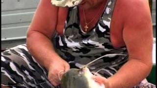 Диалоги о рыбалке - Ужение сома с квоком