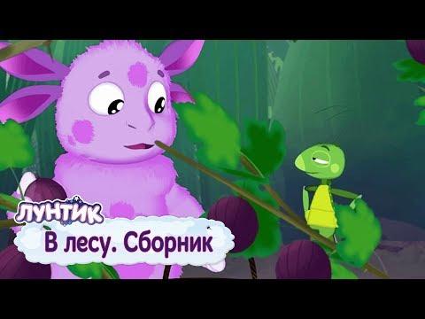 В лесу - Лунтик - Сборник мультфильмов 2019