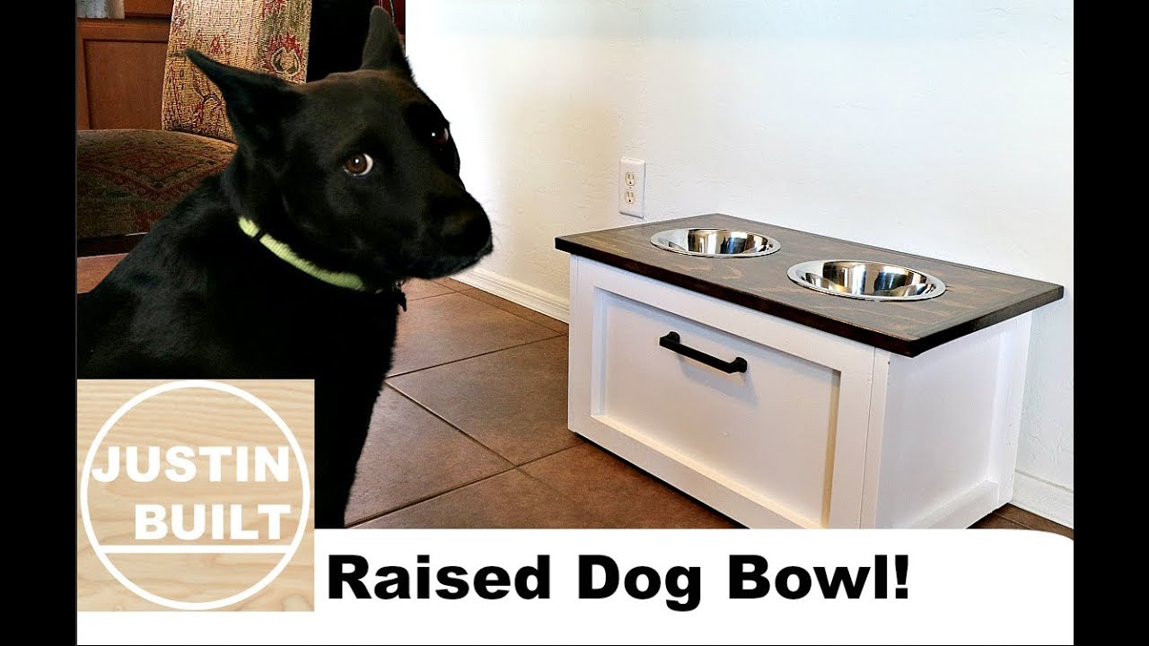 DIY Raised Dog Bowl With Storage!!