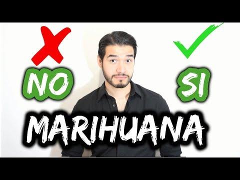 ¿FUMAS MARIHUANA? | REPORTAJE | DOCTOR VIC | Ft. VIDA RANDOM