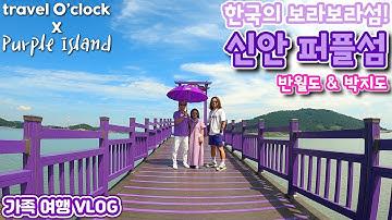 한국의 보라보라섬~ 신안 퍼플섬으로 가족여행 가보기!
