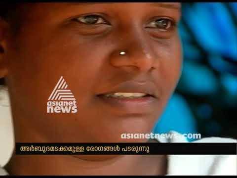 Cancer disease spreading mango farm workers in Muthalamada, Palakkad
