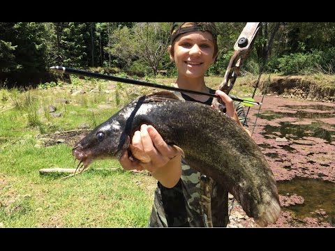 Thumbnail: Bowfishing HUGE River Monsters - Catch n Cook! HD