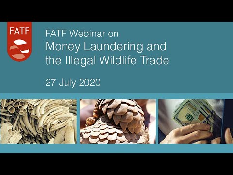 FATF Webinar On Money Laundering And Illegal Wildlife Trade