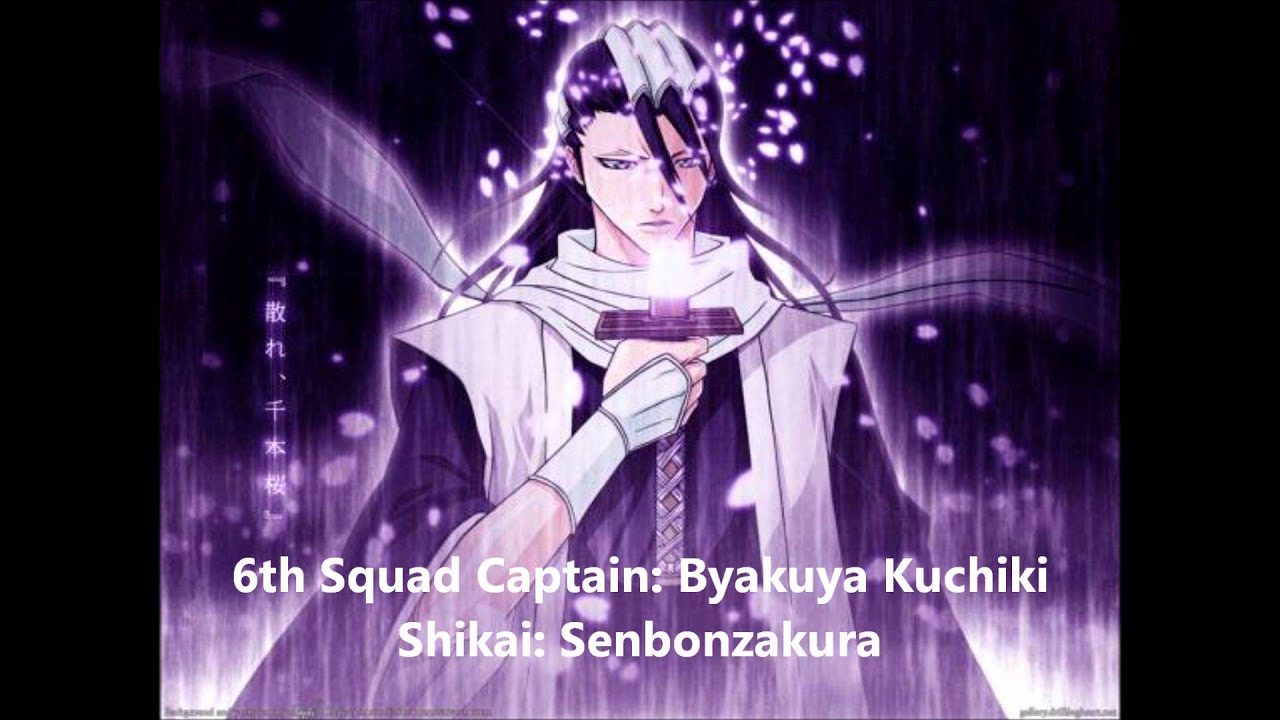 Bleach All Captain Bankai Shikai NEW