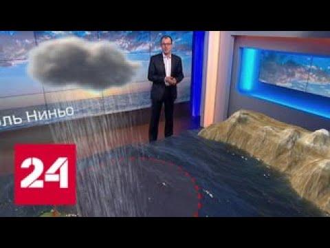 Климатологи: 2019 год может стать самым жарким в истории - Россия 24