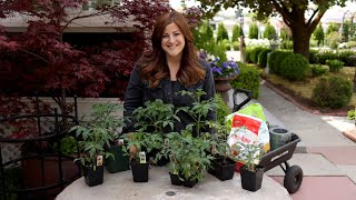 Tomato Planting Basics with Garden Answer