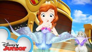 Sofia the Mermaid?  Sofia The First  @Disney Junior