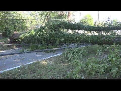 Fallen trees, damage in Newport News post-storm