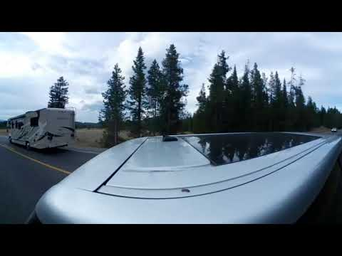 Yellowstone Bison Timelapse