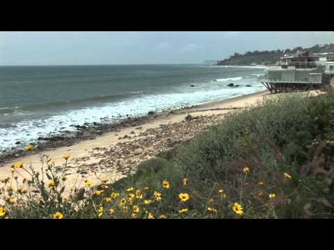 Malibu Beach California CA near Los Angeles Video View of House Homes Surf Sand and Wildflowers