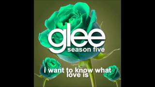 Watch Glee Cast I Want To Know What Love Is video
