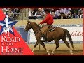 Road to the Horse 2016 DVD Snippet 1