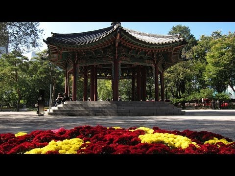 The Amazing Sights and Wonders of Seoul, South Korea