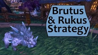Brutus and Rukus: Garrison Pet Menagerie Strategy