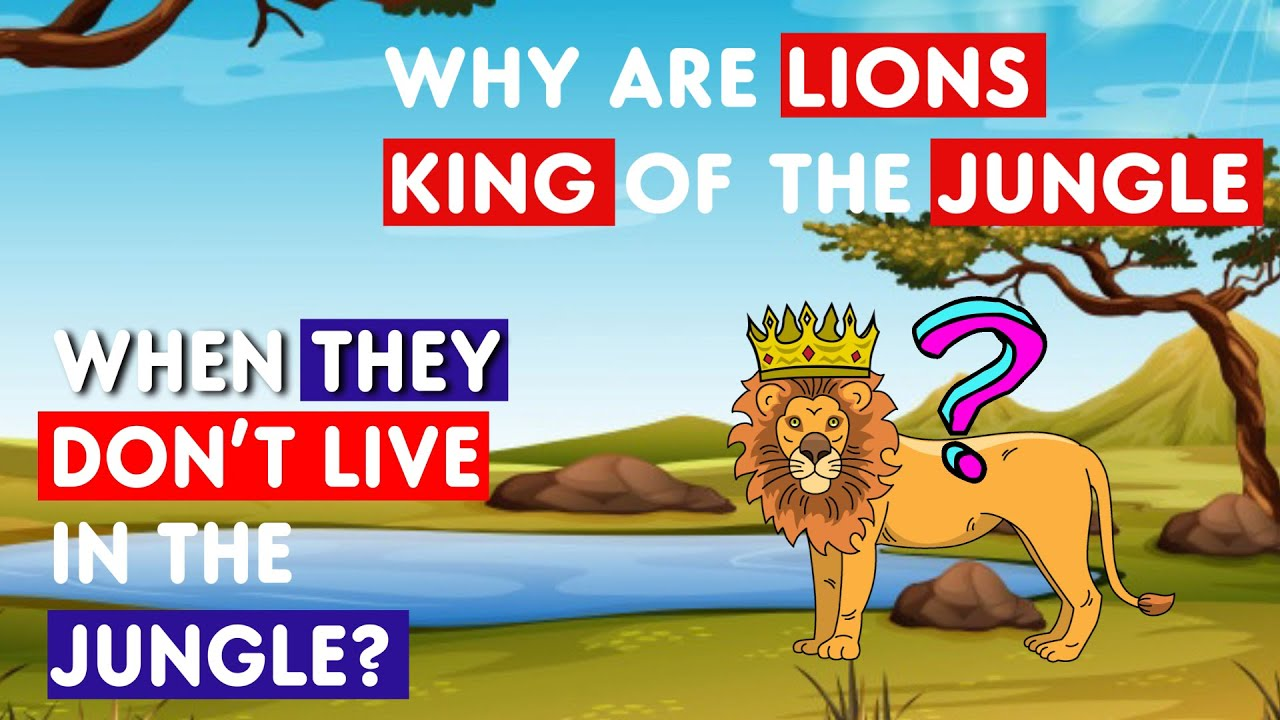 Download Why Are Lions Kings of the Jungle When They Don't Live in the Jungle