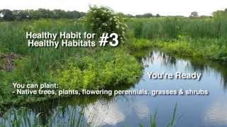 Healthy Habits for Healthy Habitats: Natural Shorelines