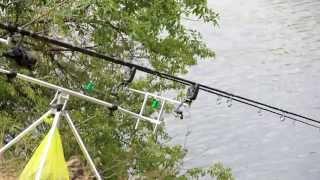 Ловля толстолоба со дна(Дневник рыболова)