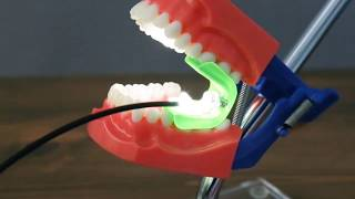 Dental Mouth Prop:  Bite Buddy™ with Built In Light By Ascentcare