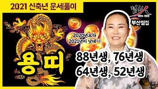 [부산점집] 2021년 용띠 띠별운세 신축년 운세 4탄!! 34세, 46세, 58세, 70세 내년운세 88년…