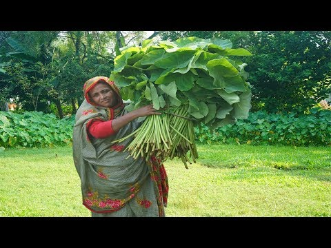 Huge Hilsa Fish Head And Taro Leaves Mashed Recipe Ilish Mach Kochu Ghati Curry Arum Spinach Cooking