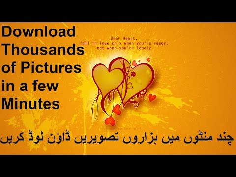 Download thousands of pictures in a few minutes | Download Wallpapers Free