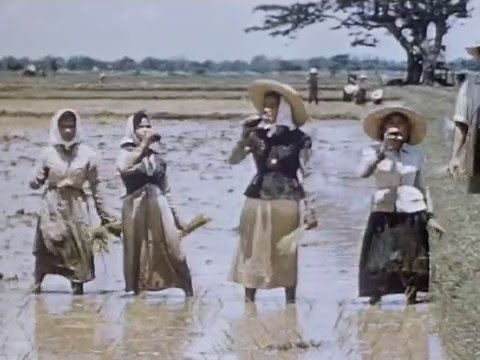 The Philippines - Pearl of the Orient - Coca Cola Advertising 1955