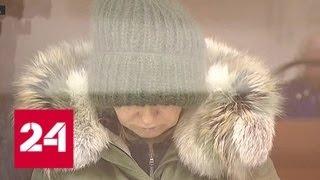 Арестована замглавы администрации Щелковского района - Россия 24