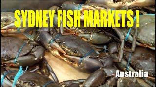 Fish Market in Sydney, Australia.