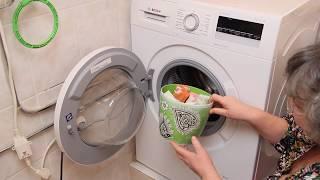 Секрет как правильно стирать чтобы не было плесени в стиральной машине