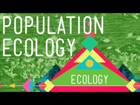 Population Ecology: The Texas Mosquito Mystery - Crash Cours