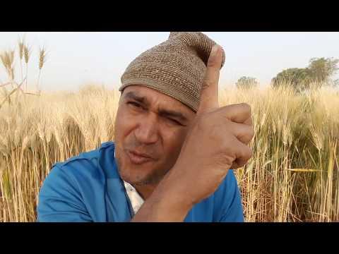 सास बहू की किच-किच  । मालवी कॉमेडी | INDER PATEL