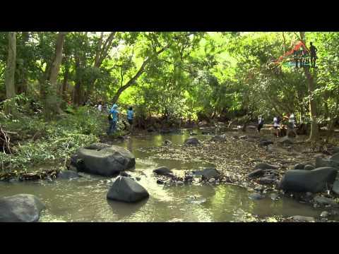 The Dodo Trail 2015