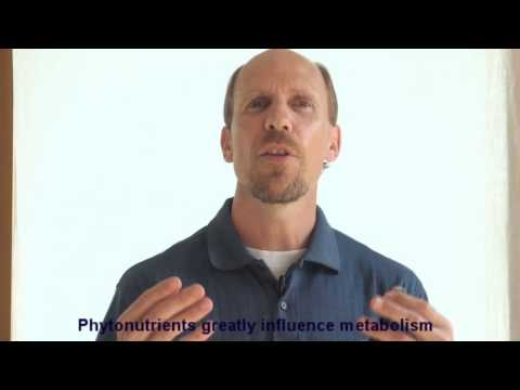 15 ways we teach our body to store fat.wmv