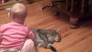самая спокойная и терпеливая кошка в мире