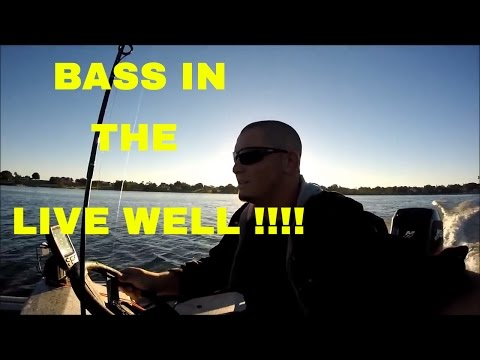 Fishing Central Florida Eagle Lake In Winter Haven Fl