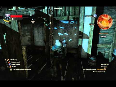 The Witcher 3 - funny Sisyphus bug - Abbe Faria on ladder