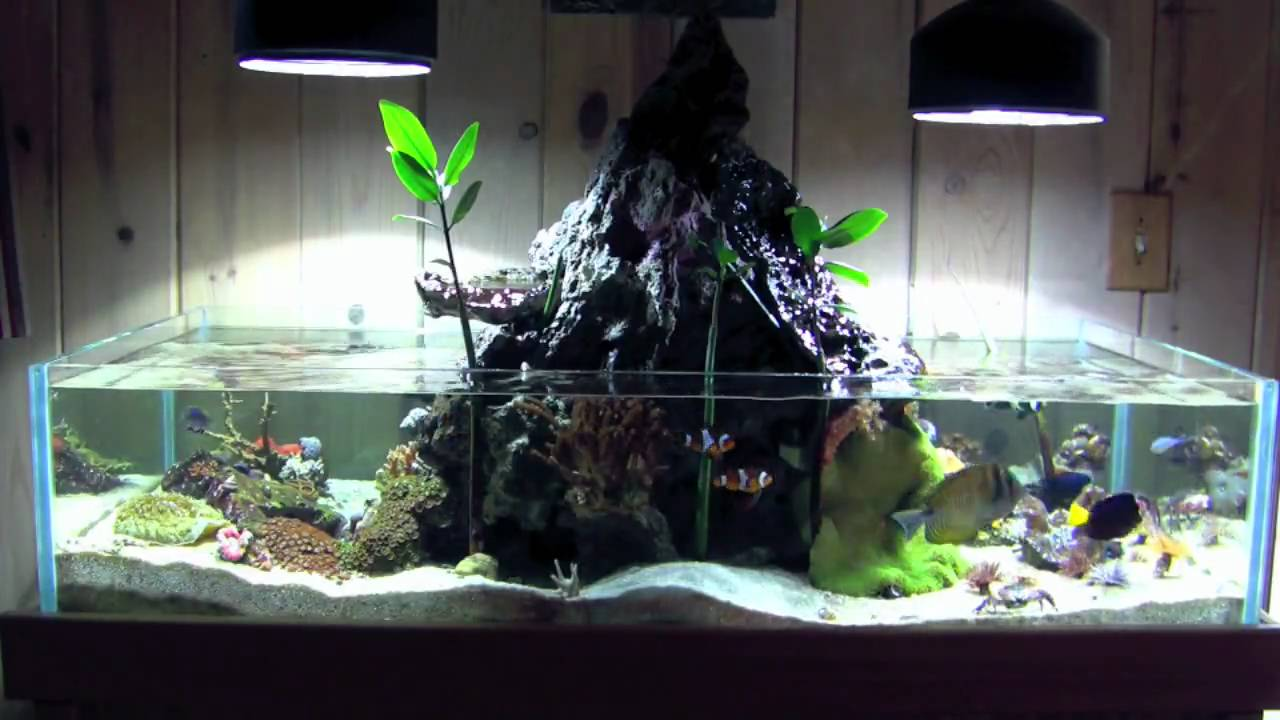 Volcano Tank Sped Up Youtube