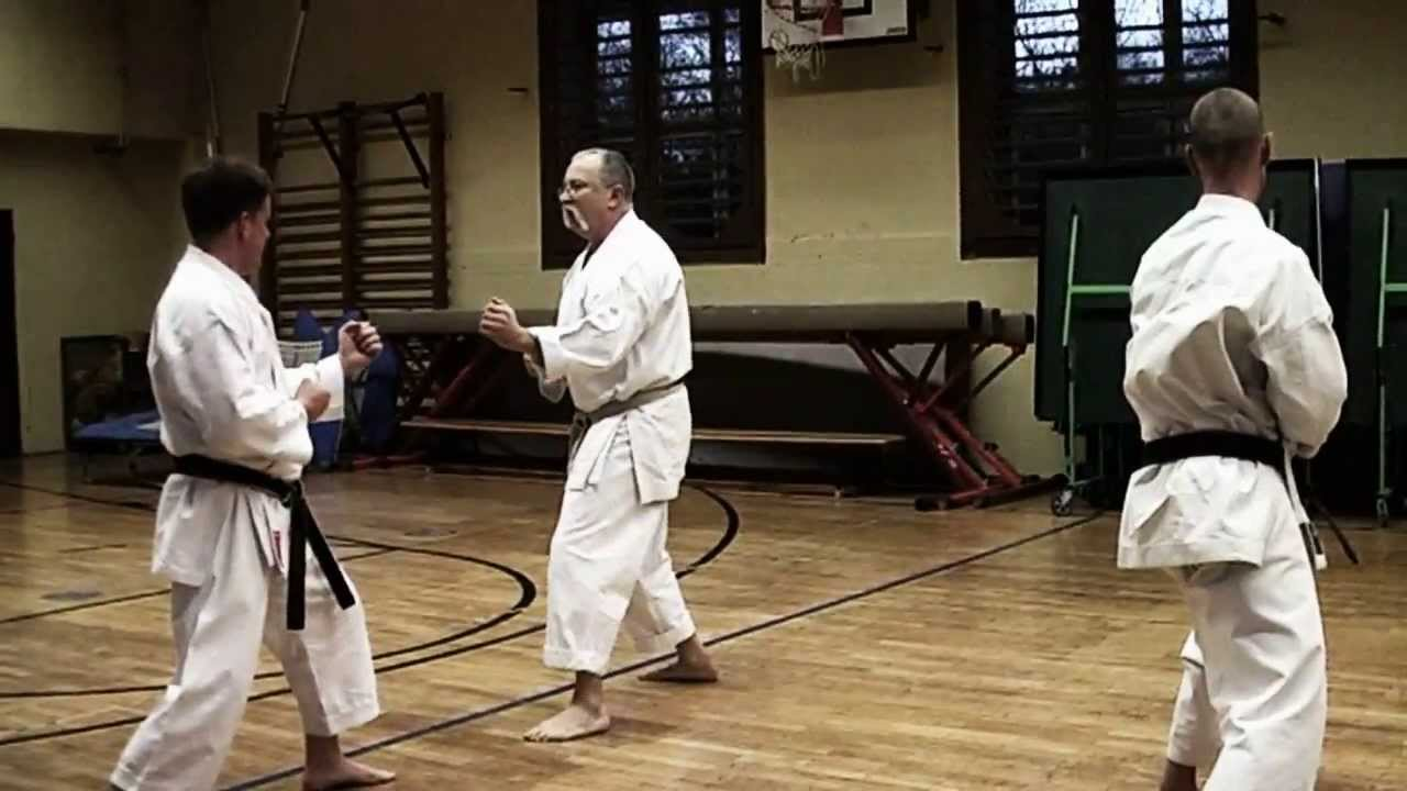 Kumite Training with Sensei Gyula Büki, 7th Dan Shotokan Karate
