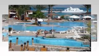 Отели Греции Крит всё включено(Греция – это страна, будто бы созданная для неземного отдыха. Ее щедрая и солнечная средиземноморская прир..., 2014-10-30T15:37:11.000Z)