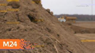 """Смотреть видео """"Специальный репортаж"""": """"бизнес на костях"""" - Москва 24 онлайн"""