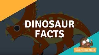 Dinosaurs for Kids - Dinosaur Facts for Kids - Dinosaur Videos for Kids, enjoy Dinos Online